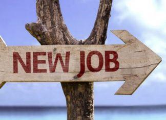 Dicas para ter sucesso no seu novo emprego