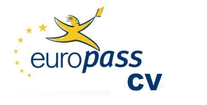Exemplo Preenchido De Curriculum Vitae Modelo Europeu